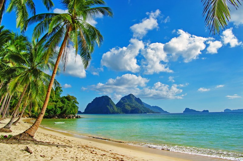 8321软包壁画美式地中海滩热带树椰树海岛马尔代夫海景