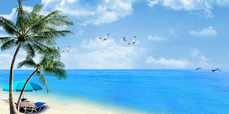 xt14049美式地中海海滩椰树遮阳伞沙滩蓝天白云海鸥马尔代夫海景