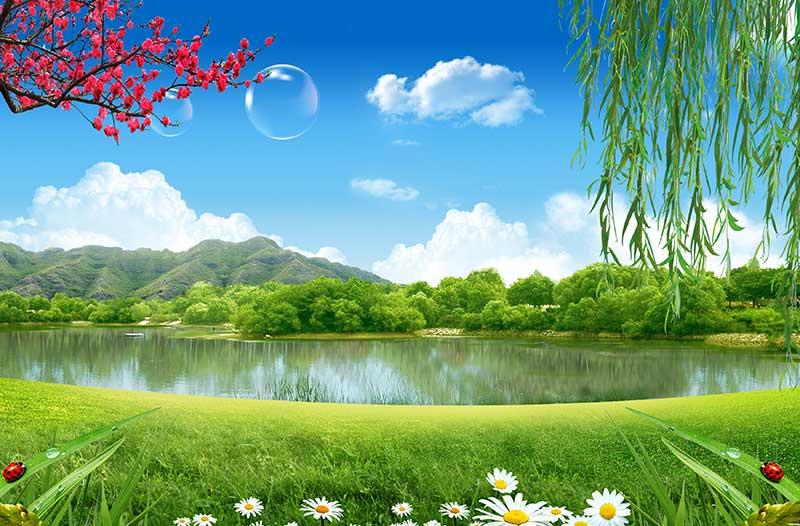 xt14213美式田园河边草地向阳花柳树红梅花水泡青山绿水蓝天白云
