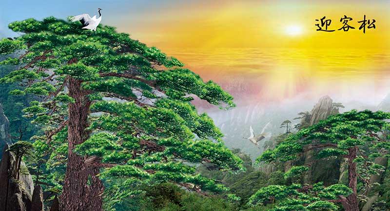 xt14376中式山水松树仙鹤黄山日出太阳迎客松